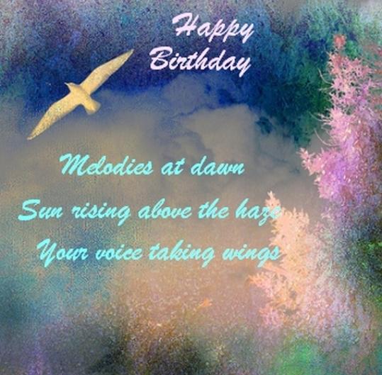 bird_soaring haiku HB2
